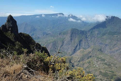 Einzigartige Bergwelt Flora und Fauna