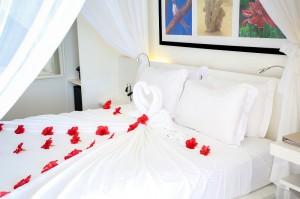 CoralStrand Honeymoon