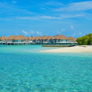 Flitterwochen Seychellen Mauritius Malediven, La Reunion