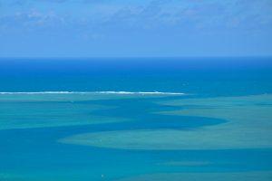 Inselpardies Rodrigues im Indischen Ozean