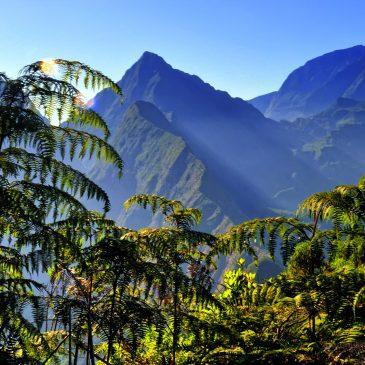 La Reunion und Mauritius Rundreise und Baden Reiseangebote