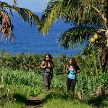 Kopie von La Reunion Rundreise Individuell  Best Of  2016 Alizee Reisen La Reunion Individuell die Spezialisten